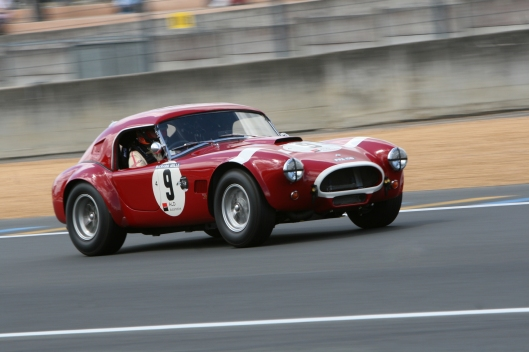 Light weight and high speed, the main characteristics of the Cobra
